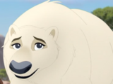 Female Polar Bear