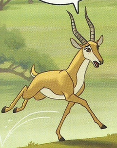 Female Gazelle