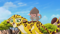 Baboons (256).png