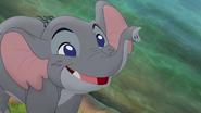 Follow-that-hippo (304)