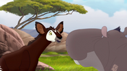 The-imaginary-okapi (69)
