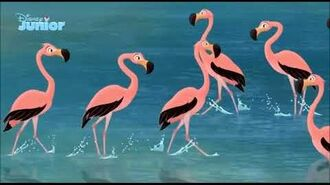 The Lion Guard Flamingo Dance Party (Swedish)