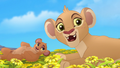 Baboons (105).png