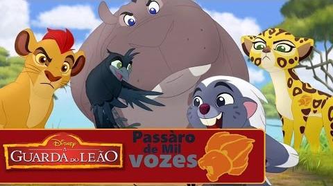 Bird of a Thousand Voices (Portuguese)