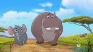 Follow-that-hippo (180)