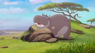 The-imaginary-okapi (23)