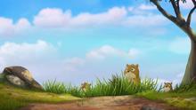 Follow-that-hippo (227)