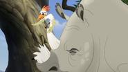 Ono-the-tickbird (48)