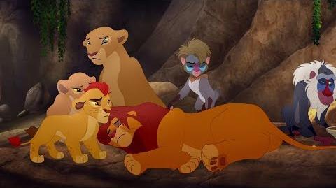 Good King Simba song and Simba is stung