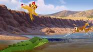 Let-sleeping-crocs-lie (173)