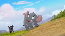 Follow-that-hippo (268)