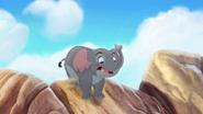 Follow-that-hippo (141)