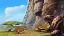 Follow-that-hippo (253)