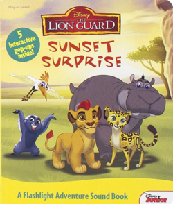 Sunset-surprise-book
