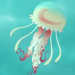 Jellyfish-profile