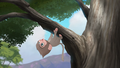 Baboons (218).png