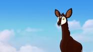 The-imaginary-okapi (474)