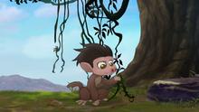 Follow-that-hippo (221)