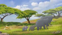 Fuli's-New-Family (552)