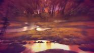 Marsh-of-mystery (12)