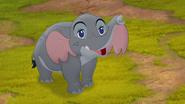 Follow-that-hippo (46)