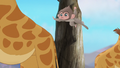 Baboons (248).png