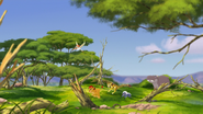 Ono-the-tickbird (5)