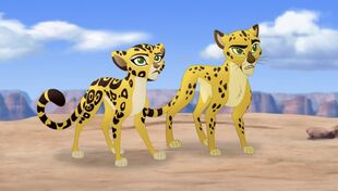 The Lion Guard (African and Asiatic Cheetahs)