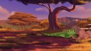 Let-sleeping-crocs-lie (352)