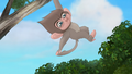 Baboons (196).png