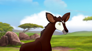 The-imaginary-okapi (57)