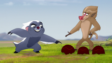 The-traveling-baboon-show (130)