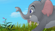 Follow-that-hippo (176)