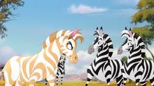The-golden-zebra (376)