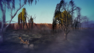 The-kilio-valley-fire (360)