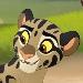 Cloudedleopards-profile