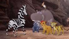 The-zebra-mastermind (553)