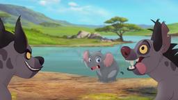 Follow-that-hippo (299)