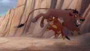 Lionsoutlands (7)