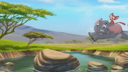Follow-that-hippo (193)