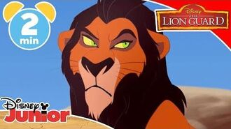 The Lion Guard When I Became Scar 🙀 Disney Junior UK