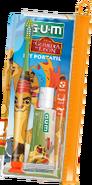 Toothbrush-pasteset