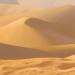 Desert-profile