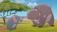 Follow-that-hippo (57)