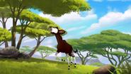 The-imaginary-okapi (390)