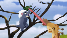 The-trouble-with-galagos (79)