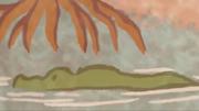 Crocodiles in Marsh