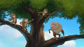 Baboons (150).png