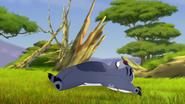 Ono-the-tickbird (31)