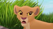 Tracking-the-gazelles (8)
